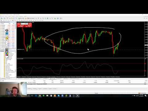 REAL Forex trading Journal. 3-5% per month at OANDA as a US trader. Episode 1