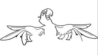 Rio - Blu Drawing - How to draw a Macaw - How to draw Blu  - Spix