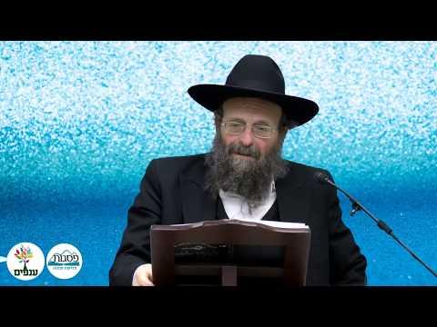 הרב יצחק  גולדווסר- ביום שנבנה בית המקדש נשה שלמה את בת פרעה