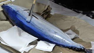 初めて釣ったカツオを絵具を塗って魚拓にする!