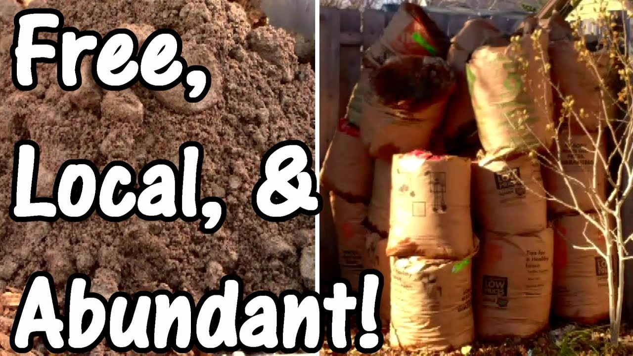 Awesome Building Garden Soil With Free, Local, And Abundant Resources   YouTube