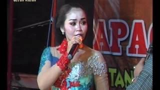 CUCAK ROWO DARSIH RPR CAMPURSARI- [Official Video Music] - Cc Dj. Indra RPR