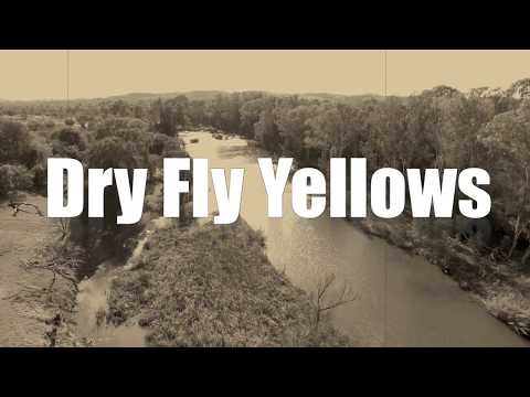 Dry Fly sight fishing on the Vaal