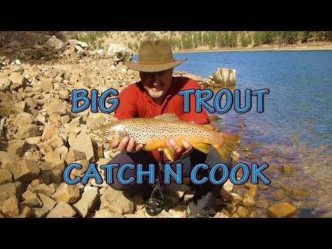 Backpacking Arizona Fishing Chevelon Canyon Lake Camping/Catch N Cook Brown Trout With My Dog