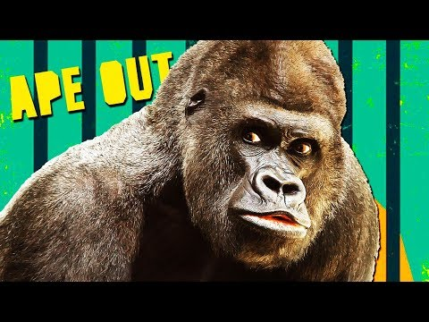 YEETIN' FOOLS! (APE OUT!)