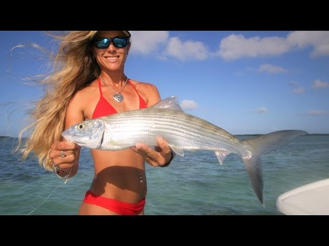 Florida Keys Bonefish & Sharks on Live Video