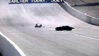 Joe DeSantis drops bike at Vegas NHRA