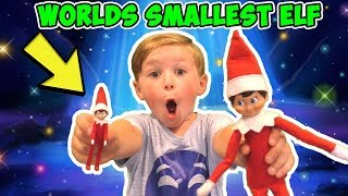 Worlds Smallest Elf on the Shelf + Hide and Seek with Tiny Elves
