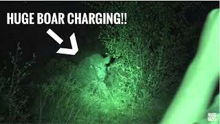 Bad shot leads to charging boar!