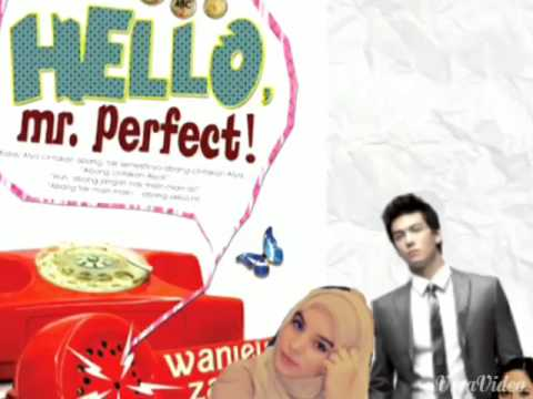 Novel: Hello Mr. Perfect (Cinta Sempurna-Yuna)