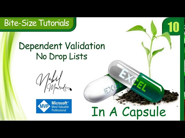 Dependent Validation…No Drop Lists - Excel In A Capsule (Episode 10)