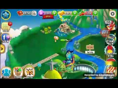 Dragon City Hatching Martial Arts Dragon And Origami Dragon Youtube