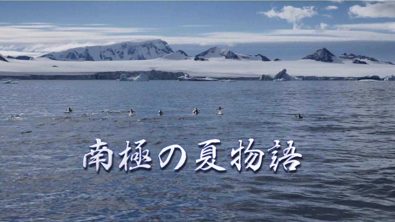【動画】南極の夏物語