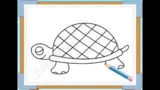 BÉ HỌA SĨ - Thực hành tập vẽ 182: Vẽ con rùa