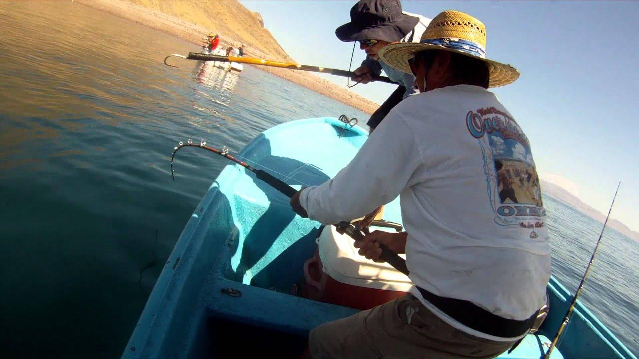 Bahia de los angeles fishing july 2015 youtube for Fishing in los angeles
