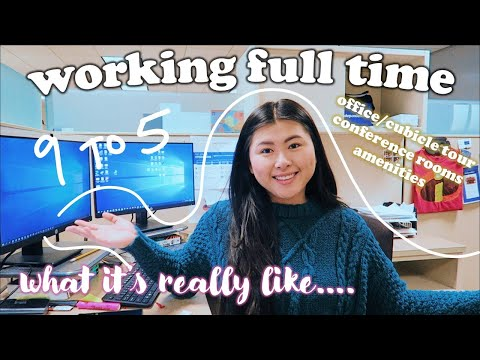 what its REALLY like working in a LARGE company in CORPORATE AMERICA \\ full time 9 to 5 job