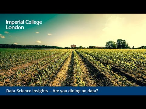 Data Science Insights – Are you dining on data?