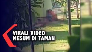 Viral Video Mesum Di Taman Maramis Kota Probolinggo