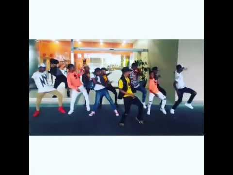 Los mejores dancehall c3 panama city