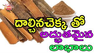 How to Lose Weight Using Cinnamon Powder and Honey || Health Tips