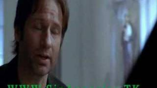 Californication Trailer Episodio 1
