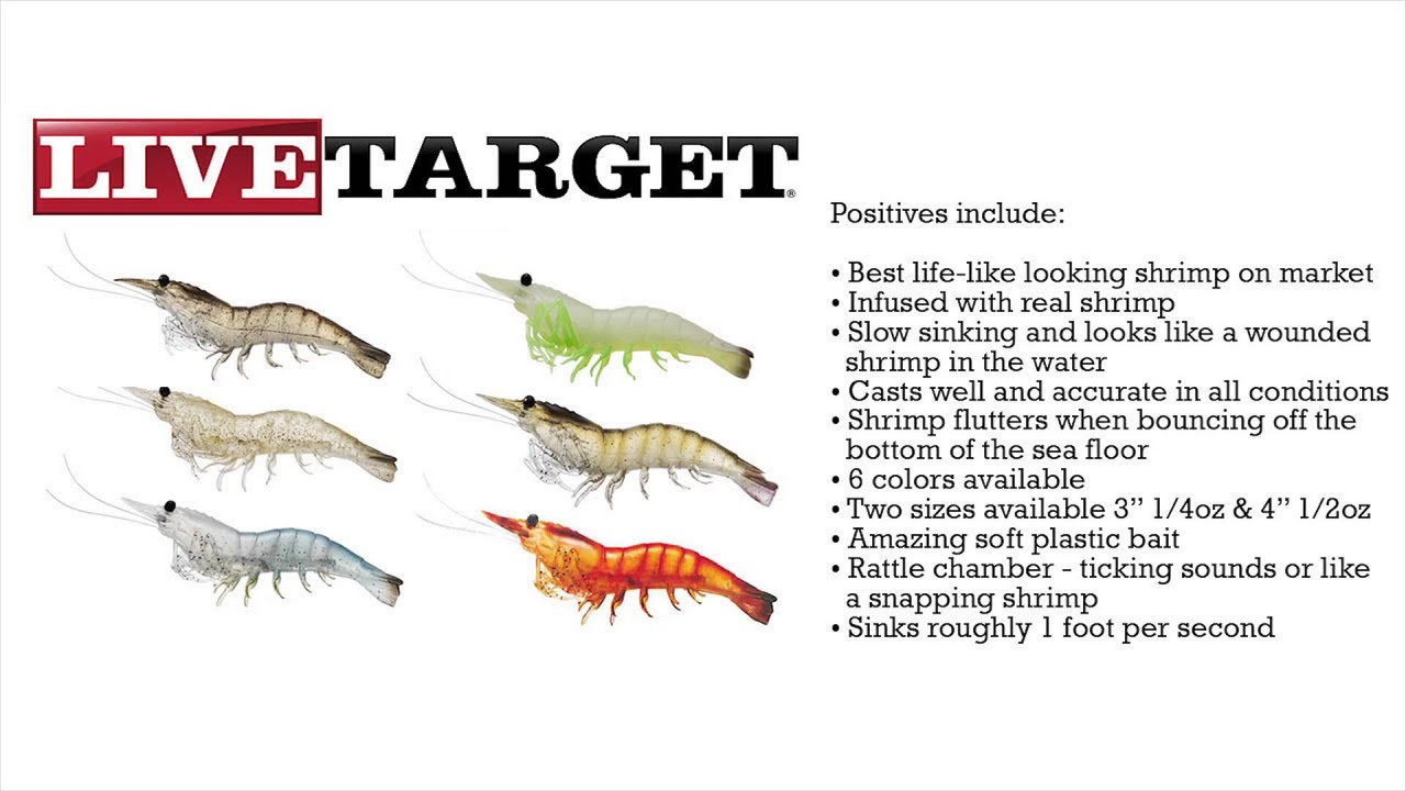 Fishing florida radio 39 s review of live target lures 4 for Fishing with live shrimp