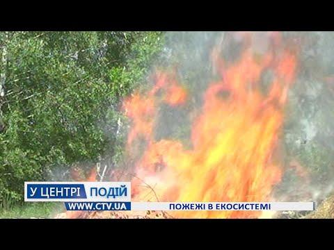 Телеканал C-TV: Пожежі в екосистемі