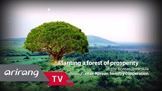 [Arirang TV] Inter-Korean Forestry Cooperation (July 4, 2018)