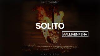Salamandra - Solito