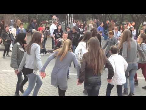 Tirana streets 2015 - Albanians celebrating the arrival of the Spring
