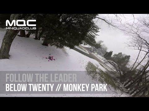 Follow the Leader // Monkey Park