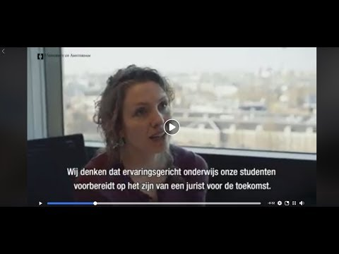 Amsterdam Law Practice