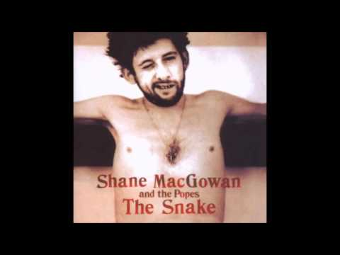 Shane Mac Gowan and The Popes   The Snake (FULL ALBUM)