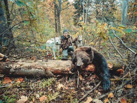 Охота на медведя с лайками в тайге Южного Урала