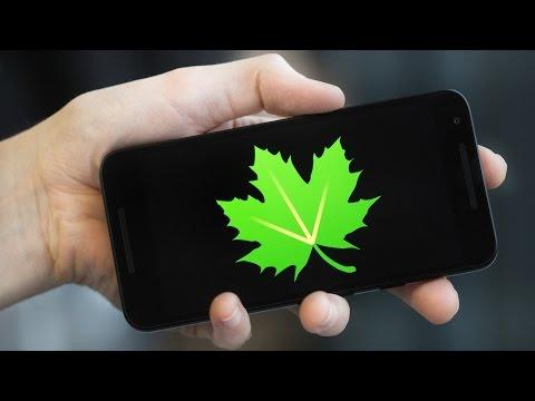 Greenify Vs Doze - Is Greenify Still Useful