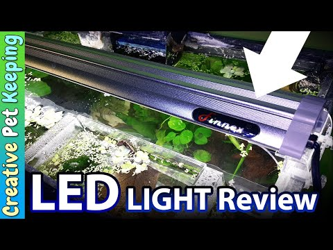 5 best led lights for planted freshwater aquariums 2019 top picks