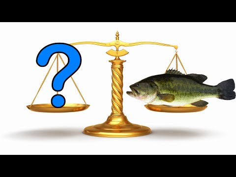 The BEST Method For Estimating Weight Of Largemouth Bass