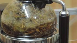 自宅乾燥のハーブ(ローマンカモミール)での蒸留
