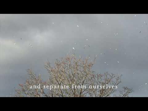 Rupert Spira Commentary on Nature