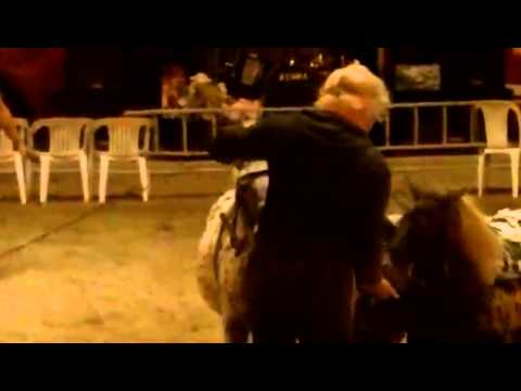 Human pony femdom scene (The Libertine) from YouTube · Duration:  3 minutes 38 seconds