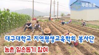 대구대학교 지역평생교육학회 봉사단, 농촌 일손돕기 참여