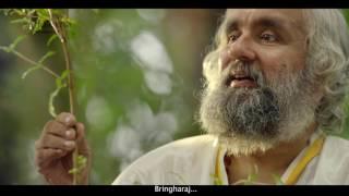 indulekha ayurvedic oil for hair fall hair loss helps hair growth hindi st