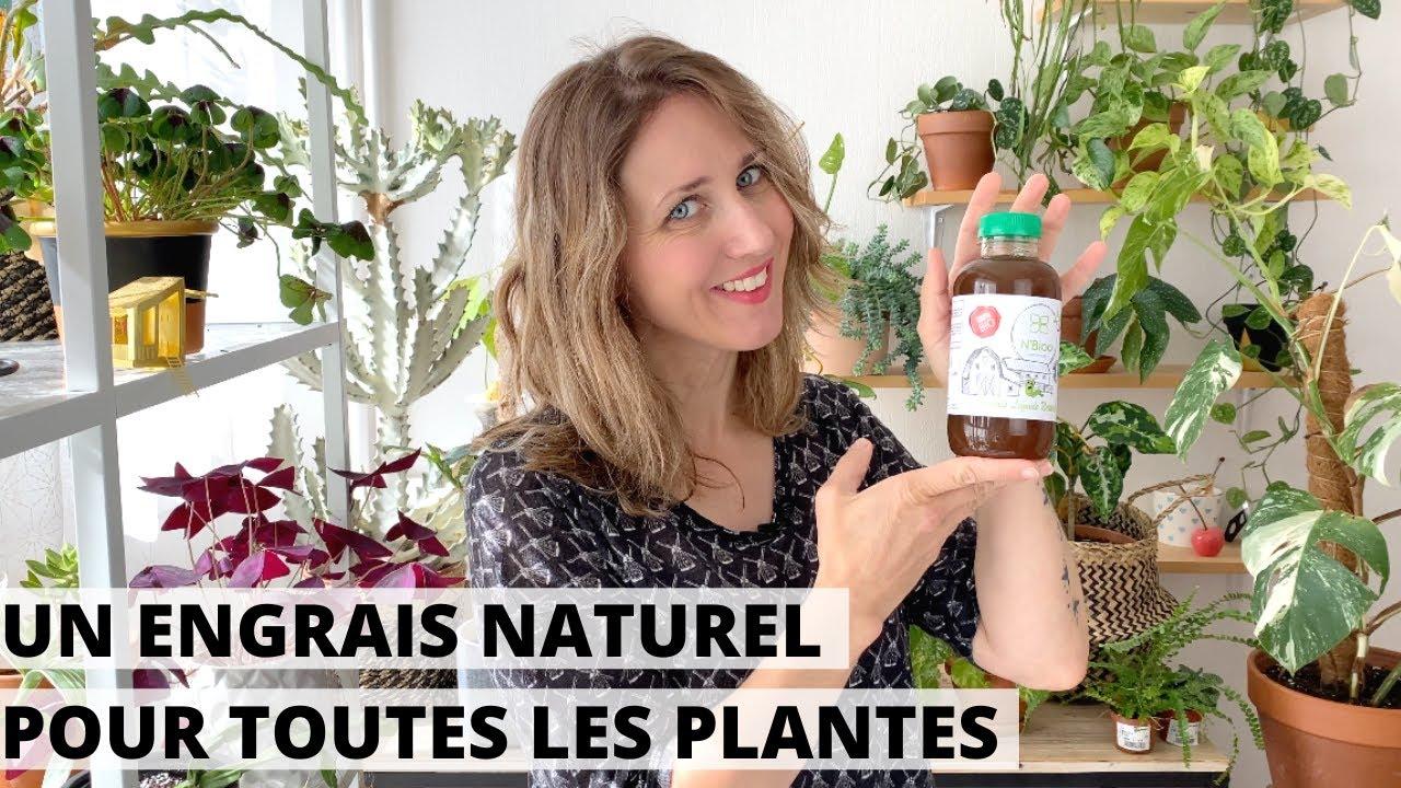 🌿 UN ENGRAIS NATUREL POUR TOUTES LES PLANTES : JE TESTE LE N'BIOO LIQUIDE !
