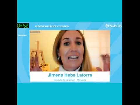 Exposicion de Jimena Latorre en la Audiencia Pública del Gas