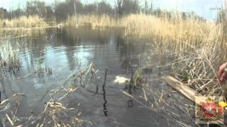 Ловля карася на поплавочную удочку весной. Как я карася ловил
