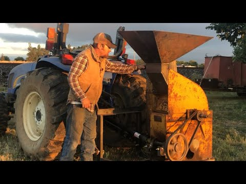 Minneapolis Moline Hammer Mill Put To The Test!!  Does It Even Work?