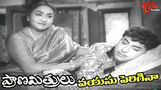 Prana Mithrulu Telugu Movie Songs | Vayasu Perigina Song | ANR,Jaggaiah - OldSongsTelugu