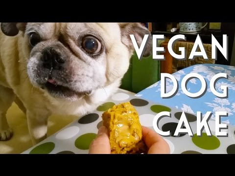 VEGAN DOG CAKE • A Recipe For Dogs (and Their Humans)