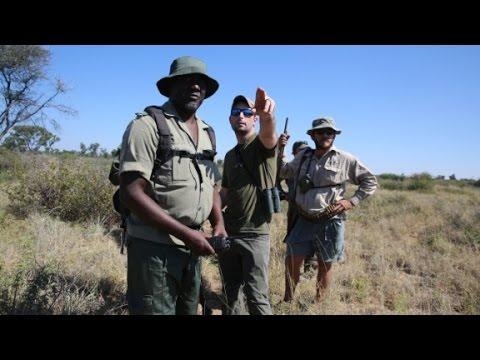 Hunter pays $350,000 to kill endangered black rhino