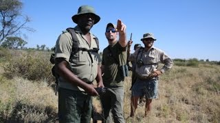 Hunter pays $350,000 to kill endangered black rhino
